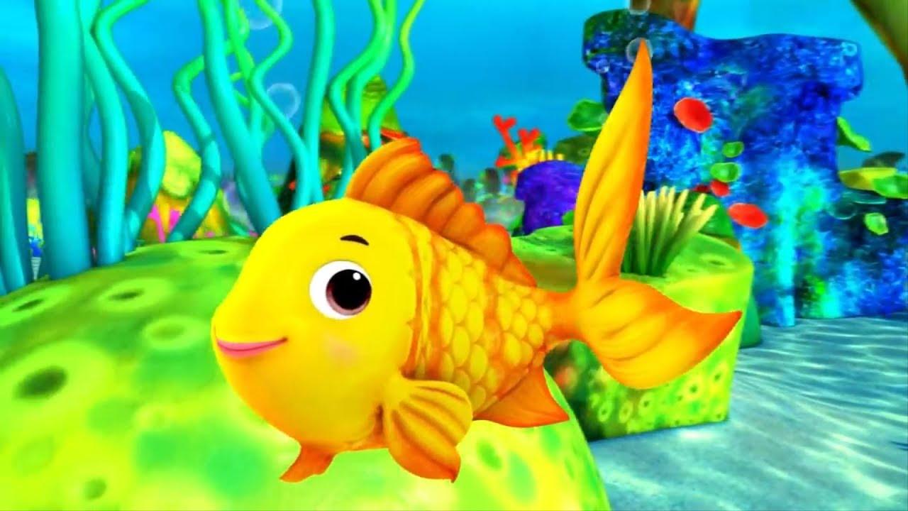 Nằm mơ thấy cá là điềm gì, đánh con gì?